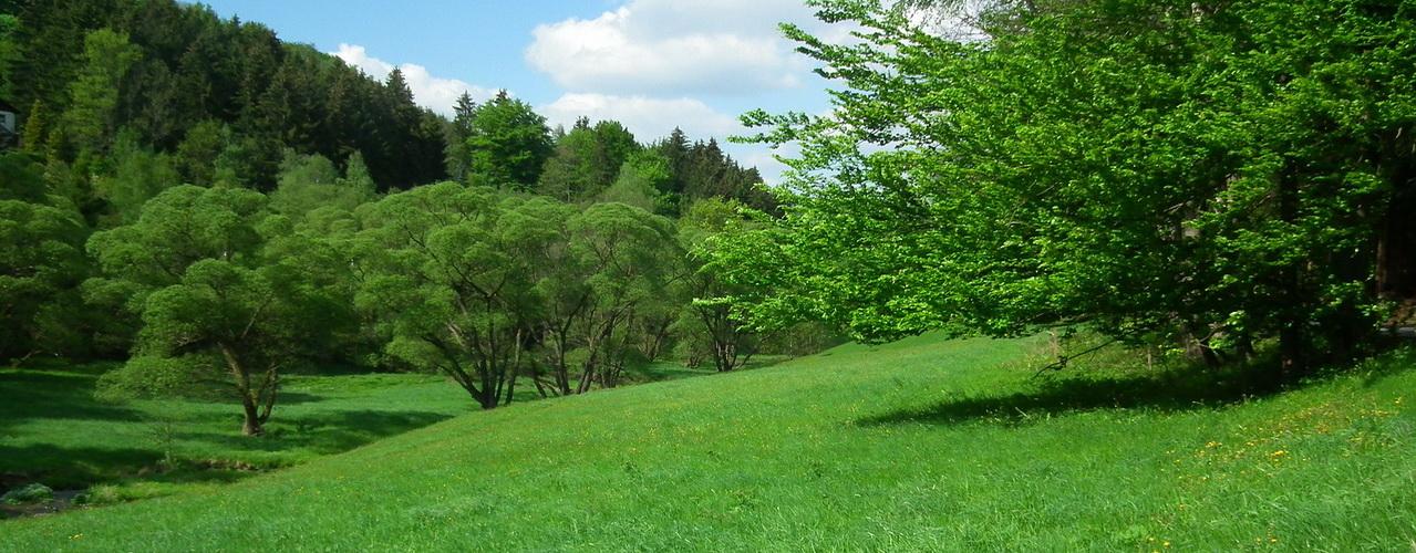 green-valley-107297_1280