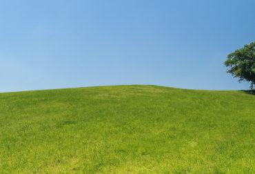 hill-421569_1280